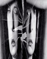 Metaritratti - donna manager allo specchio  Metaritratti - fiore umano  /  © Franco Donaggio, tutti i diritti riservati