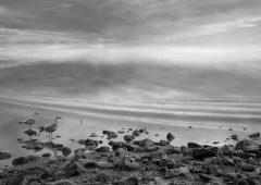 Reflections 13  /  ©Franco Donaggio