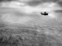 Reflections#14  -  ©Franco Donaggio, tutti i diritti riservati