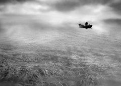 Reflections 14  /  ©Franco Donaggio
