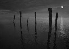 Reflections 23  /  ©Franco Donaggio