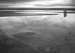 Reflections 44  /  ©Franco Donaggio