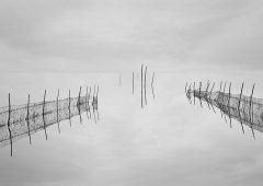 Reflections 6  /  ©Franco Donaggio