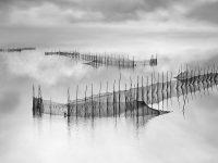 Reflections#7  -  ©Franco Donaggio, tutti i diritti riservati