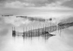 Reflections 7  /  ©Franco Donaggio