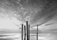Reflections 8  /  ©Franco Donaggio
