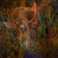 Sedimenti - effetto della profondità /  ©Franco Donaggio