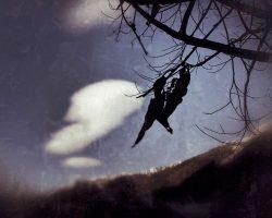 Il bosco del pensiero - due anime  /  © Franco Donaggio, tutti i diritti riservati