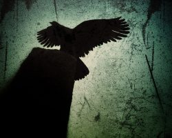Il bosco del pensiero - il guardiano del sentiero  /  © Franco Donaggio, tutti i diritti riservati