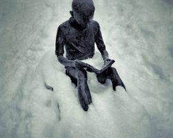Il bosco del pensiero - il solitario  /  © Franco Donaggio, tutti i diritti riservati
