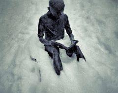 Bosco del pensiero - il solitario  /  ©Franco Donaggio, tutti i diritti riservati