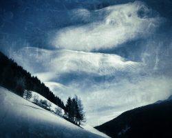 Il bosco del pensiero - la natura si rivela  /  © Franco Donaggio, tutti i diritti riservati