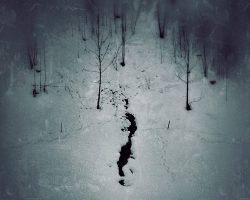 Il bosco del pensiero - le tane del lupo  /  © Franco Donaggio, tutti i diritti riservati
