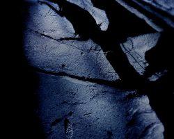 Il bosco del pensiero - l'ombra della strega  /  © Franco Donaggio, tutti i diritti riservati