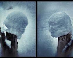 Il bosco del pensiero - metamorfosi #1 #2  -  © Franco Donaggio, tutti i diritti riservati