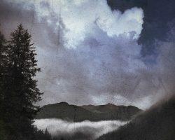Il bosco del pensiero - nuvola nascente  /  © Franco Donaggio, tutti i diritti riservati