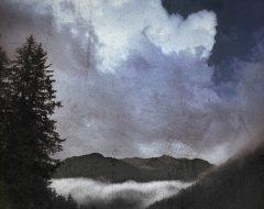 Bosco del pensiero - nuvola nascente  /  ©Franco Donaggio, tutti i diritti riservati