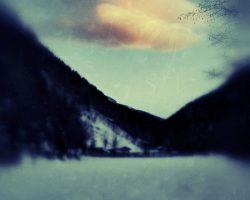 Il bosco del pensiero - passaggio  /  © Franco Donaggio, tutti i diritti riservati