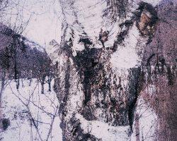 Il bosco del pensiero - segno del sentiero  /  © Franco Donaggio, tutti i diritti riservati  /  © Franco Donaggio, tutti i diritti riservati
