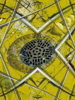 Urbis - fiore di ferro  -  ©Franco Donaggio, tutti i diritti riservati