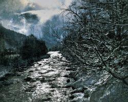 Il bosco del pensiero - volto dell'inverno  /  © Franco Donaggio, tutti i diritti riservati